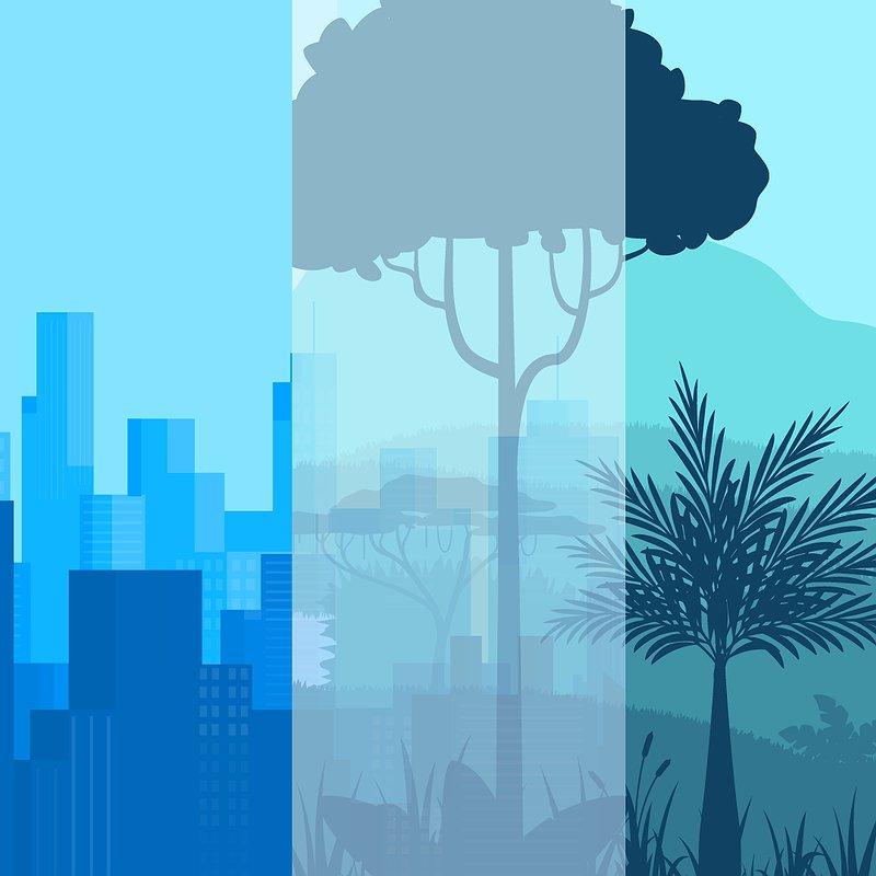 Prozesse und Umwelt