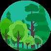 Wald als Lebensgemeinschaft