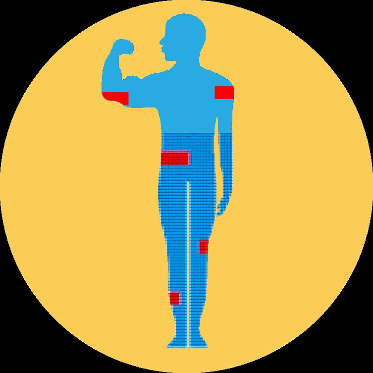 Bestandteile im Körper